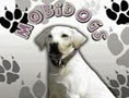 Mobidogs