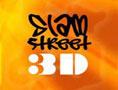 SlamStreet3D