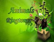 animals-ringtones