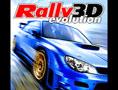 3D Rally Evolution
